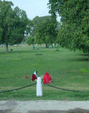 New Delhi lawns