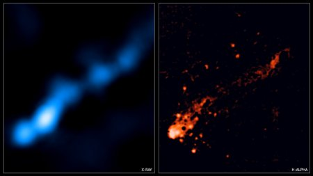A long galactic tail forming stars