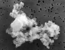 Interstellar dust particle