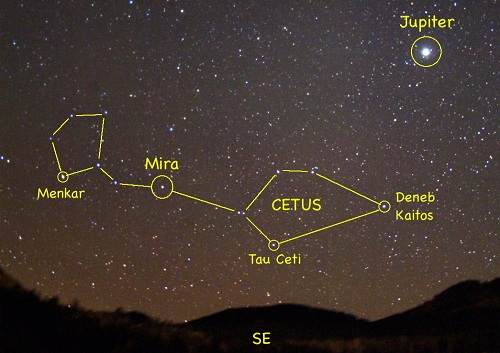 Tau Ceti S Five Planet Candidates
