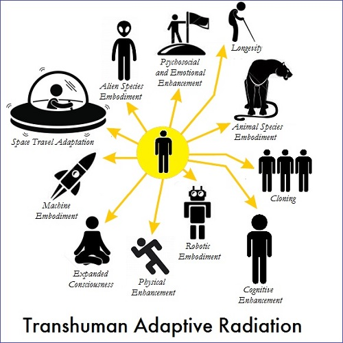 transhuman-adaptive-radiation-2